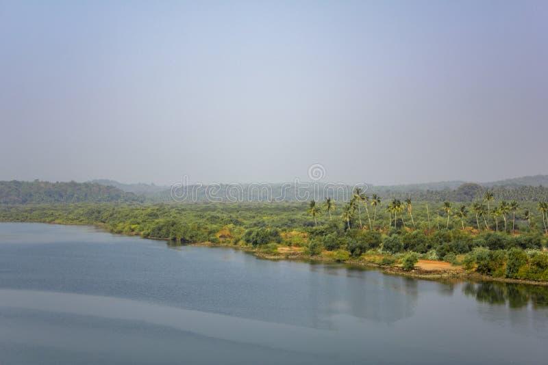 Brzeg rzeki z jaskrawym świeżym zielonym lasem i drzewka palmowe pod jasnym niebieskim niebem, widok z lotu ptaka fotografia stock
