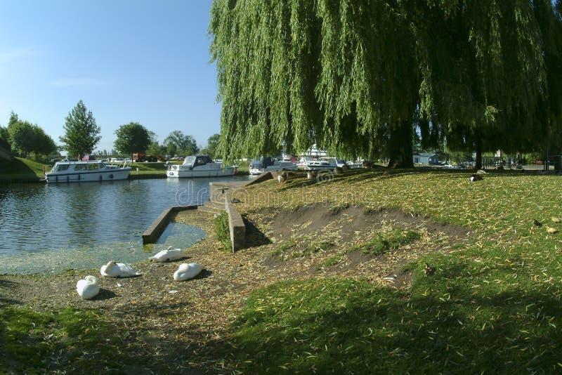 Download Brzegi rzeki zdjęcie stock. Obraz złożonej z spokój, britain - 127362