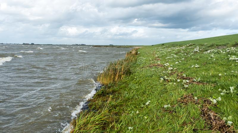 Brzegowa linia hollands jeziorni obraz royalty free