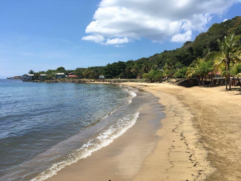 Brzegowa linia w Roatan, Honduras fotografia stock