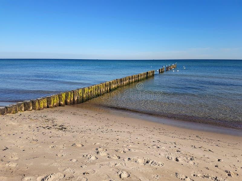 Brzegowa ochrona przy morzem bałtyckim obraz stock