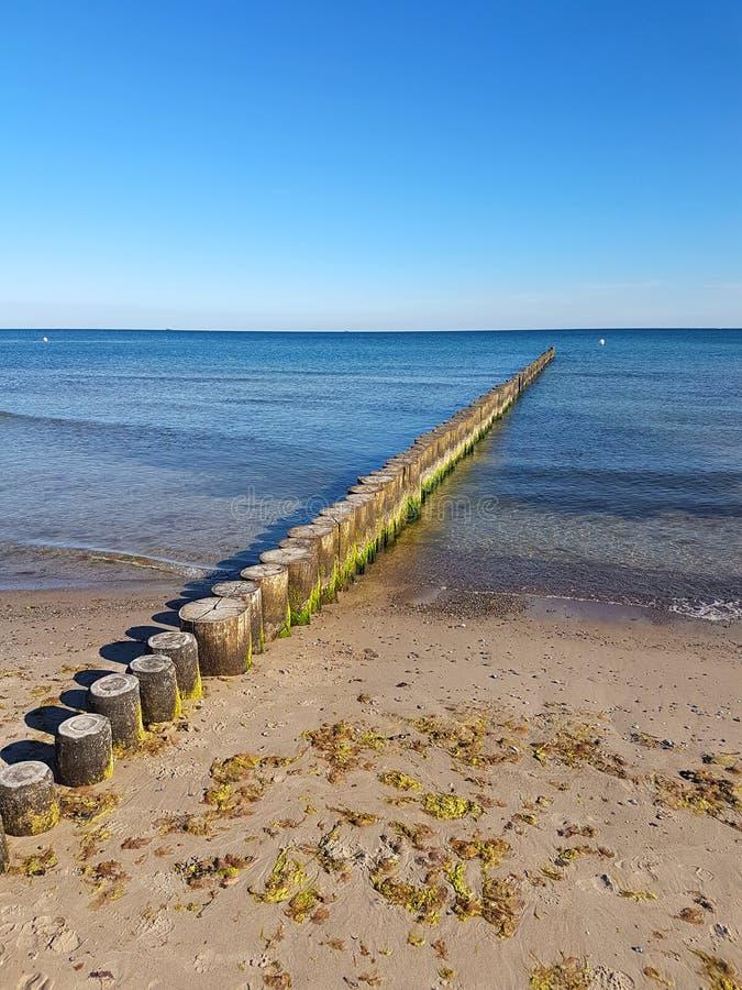 Brzegowa ochrona przy morzem bałtyckim fotografia stock