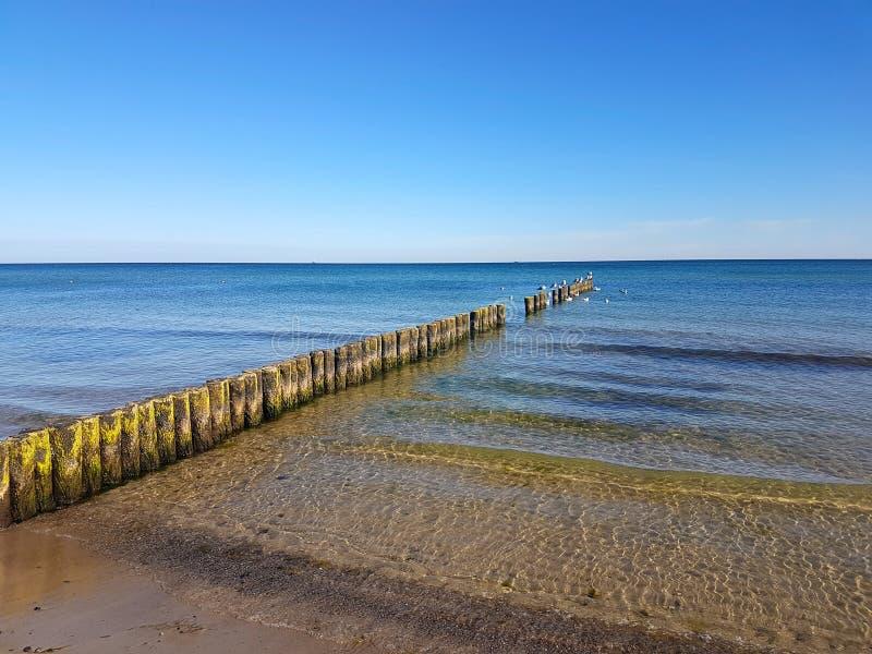 Brzegowa ochrona przy morzem bałtyckim zdjęcia stock