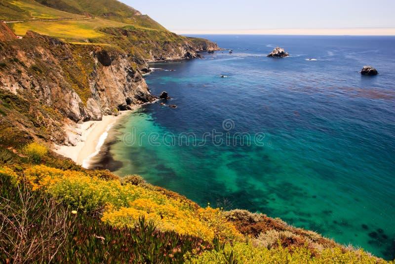 brzegowy California duży sur fotografia stock