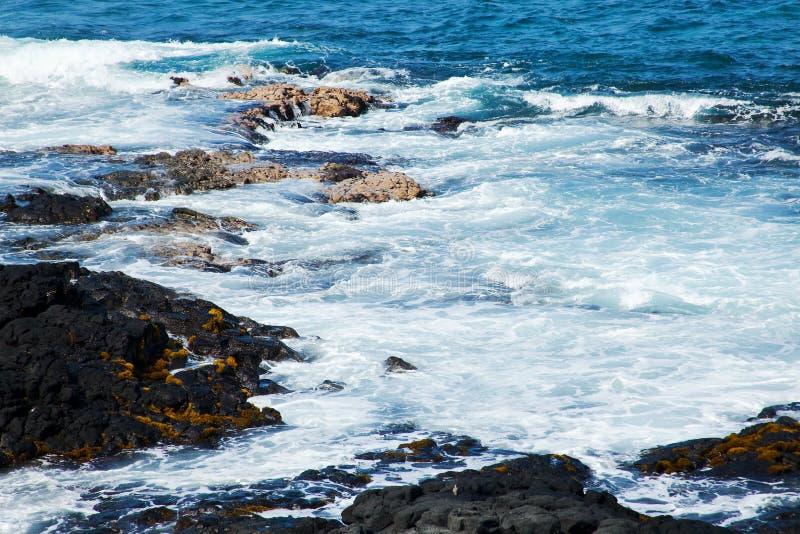 brzegowy Hawaii zdjęcia stock