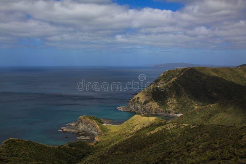 brzegowy nowy Zealand zdjęcia stock