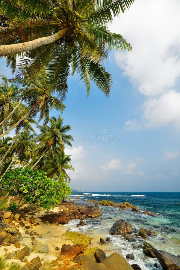 Download Brzegowy ocean obraz stock. Obraz złożonej z krawędź - 28973297