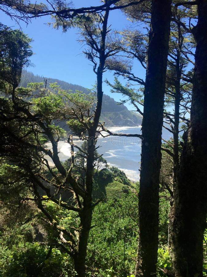 brzegowy Oregon obrazy royalty free