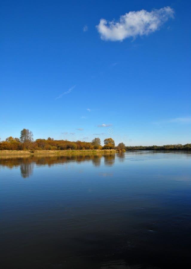 brzegu rzeki robaki obraz royalty free