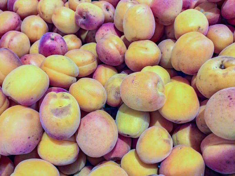 Brzoskwini drzewo jest drzewem zapoczątkowywa w Chiny, kwiaty i świętowali dokąd, czyj ja rozważał symbol nieśmiertelność, zdjęcie stock