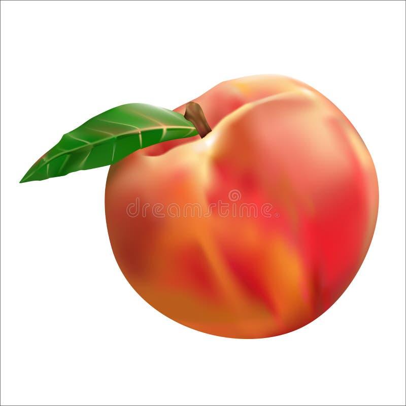 Brzoskwini owoc ilustracji