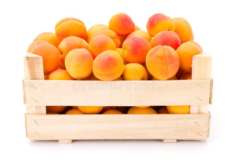 Brzoskwinie (Prunus persica) w drewnianej skrzynce zdjęcia royalty free