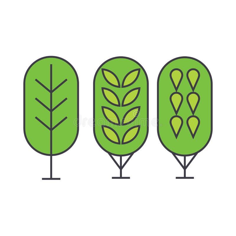 Brzozy drzewnej linii ikony pojęcie Brzozy drzewa wektoru płaski znak, symbol, ilustracja ilustracja wektor