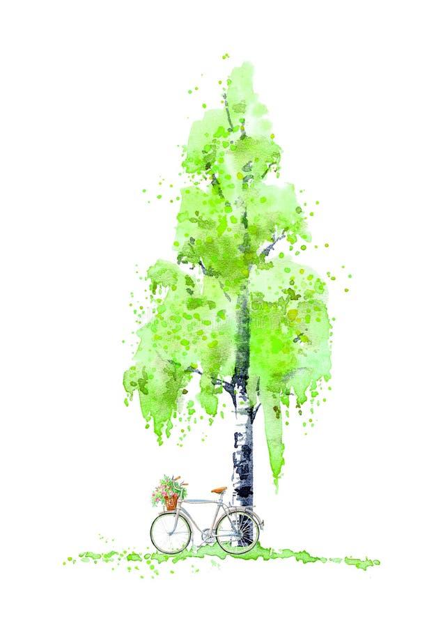 Brzozy drzewo, ławka i lampion, Jesień Brzoza bicykl i drzewo Lato ilustracji