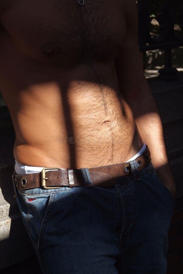 brzuch dolców fotografia stock