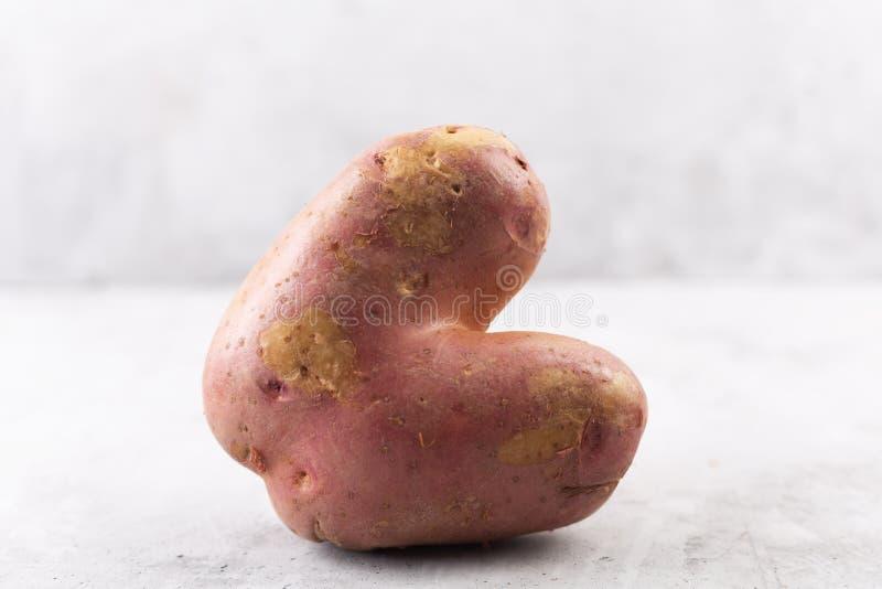 Brzydka grula w kierowym kształcie na szarym tle Śmieszny, unnormal warzywo, lub karmowego odpady pojęcie zdjęcie stock