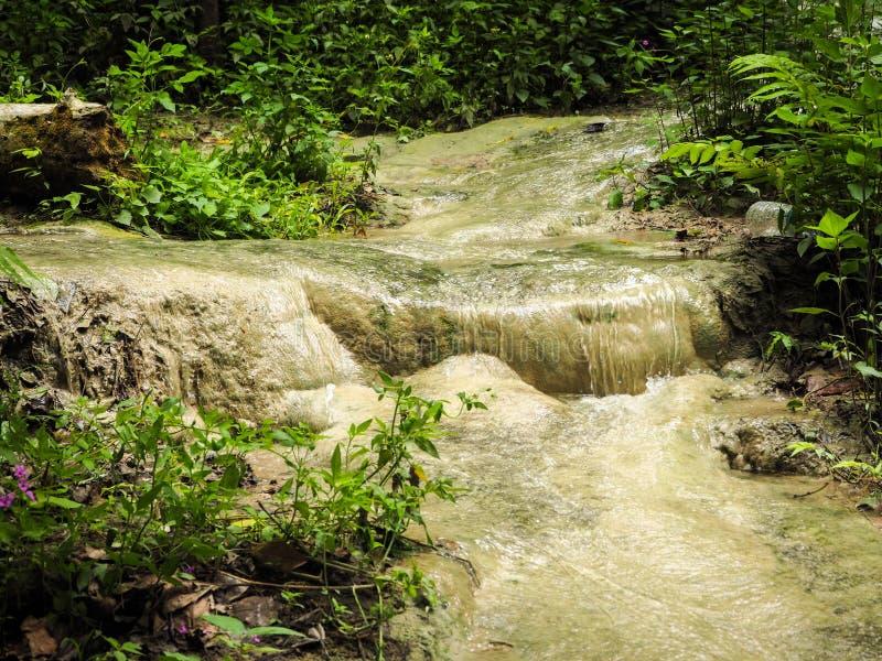 Bua Tong Sticky Waterfalls photos libres de droits