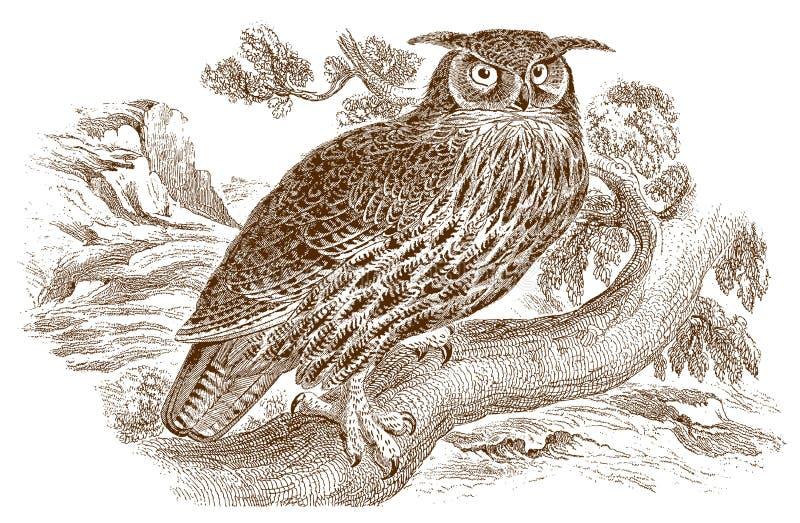 Bubón eurasiático o europeo del bubón del Eagle-búho con los penachos divertidos del oído que se sientan en una rama libre illustration