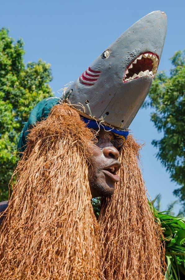 Bubaque, Guinea-Bissau - 7 dicembre 2013: Uomo africano non identificato in costume tradizionale dello squalo che fa ballo ritual fotografie stock libere da diritti