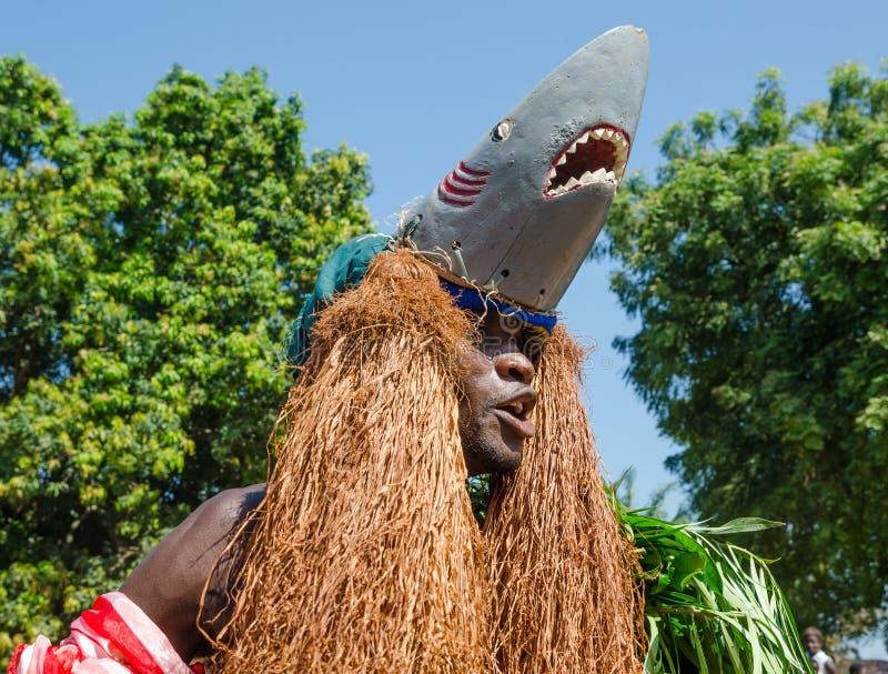 Bubaque, Guinea-Bissau - 7 dicembre 2013: Uomo africano non identificato in costume tradizionale dello squalo che fa ballo ritual immagine stock libera da diritti