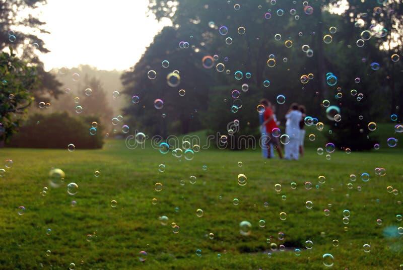 Download Bubblafärg arkivfoto. Bild av vänner, float, äng, flottörhus - 978914