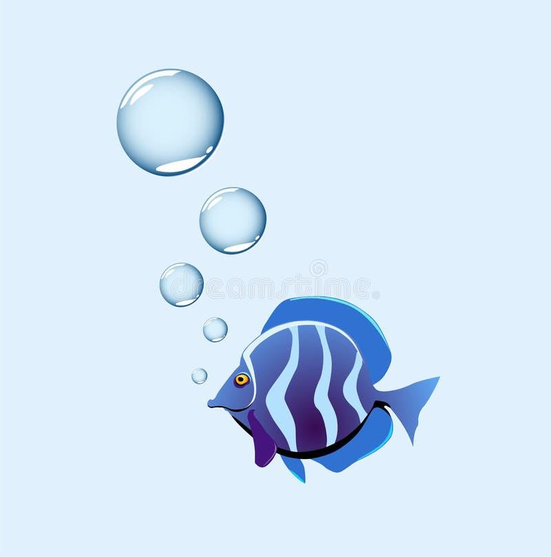 Bubblafisk royaltyfria bilder