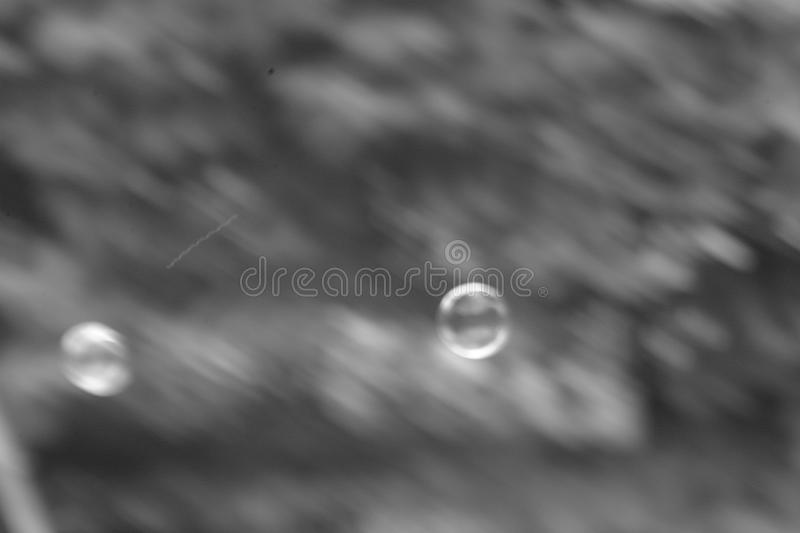 Download Bubbles in the air stock image. Image of floating, black - 750975