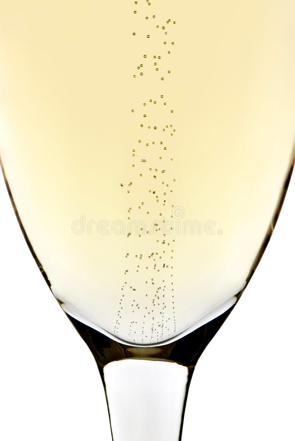 Bubbles in champagne. Rising bubbles in a champagne glass with white background royalty free stock image