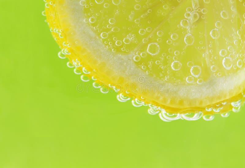 bubbles citruset royaltyfri bild