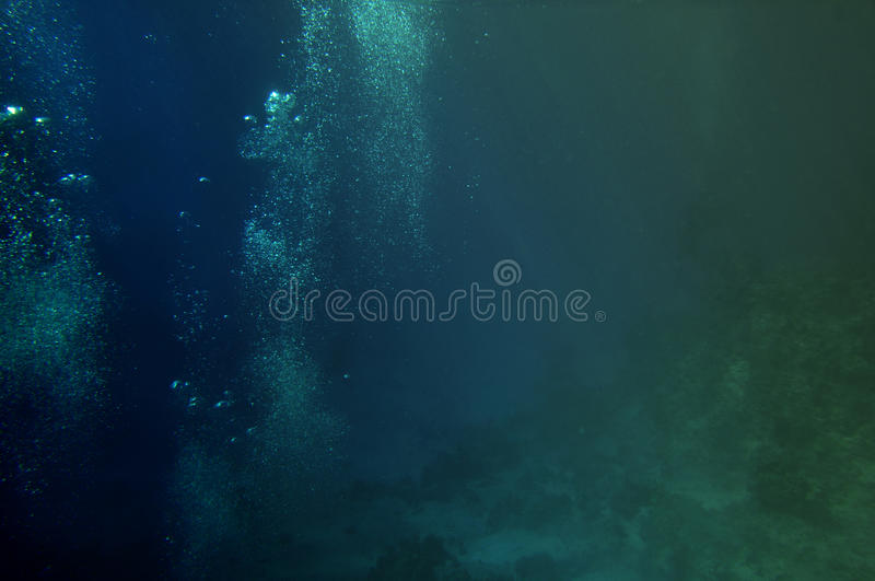 Download Bubbles Of Divers Among Corals Stock Image - Image: 12243833