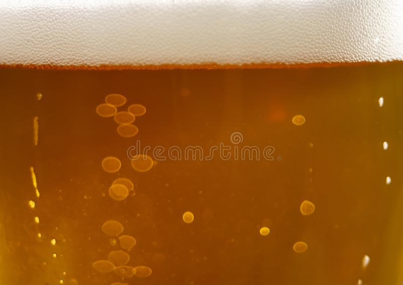 Bubbles and foam in the rays of light in a glass of beer close-up royalty free stock image