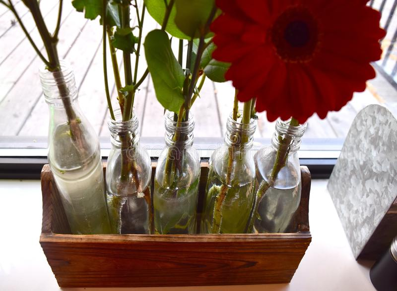 Bubbles-shielded flower stems in water filled jars stock photo