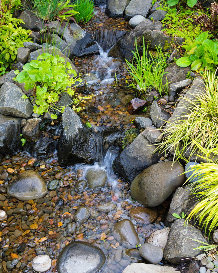 Bubbling brook water featuer. Bubbling brook water feature with stones and plants royalty free stock photo
