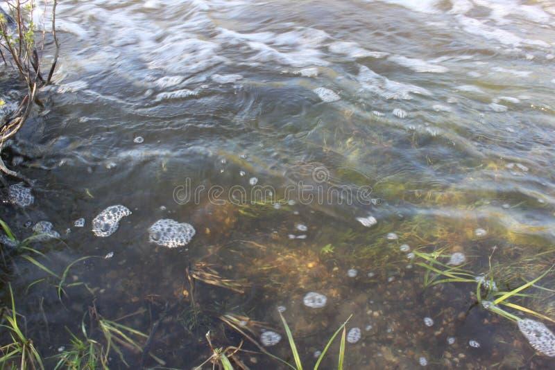 Bubblorna på flodwaten royaltyfri foto