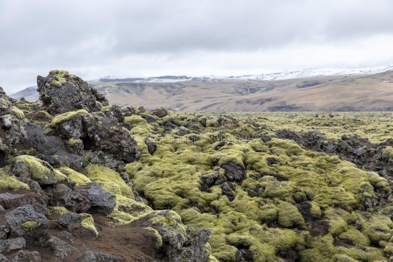 Lavlandscape Iceland royalty free stock photo