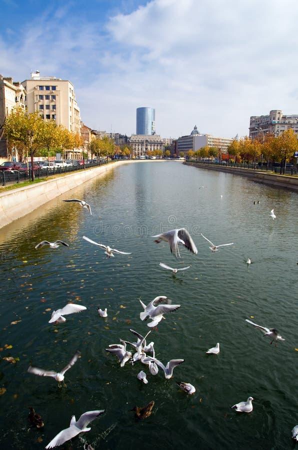 Bucarest - opinión del otoño fotografía de archivo