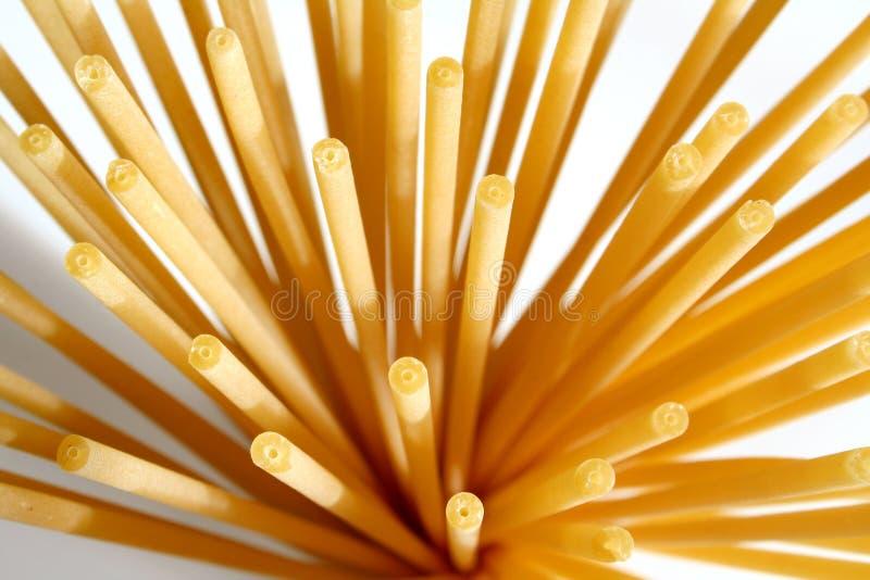 Bucatini pasta. Uncooked bucatini pasta stock photo
