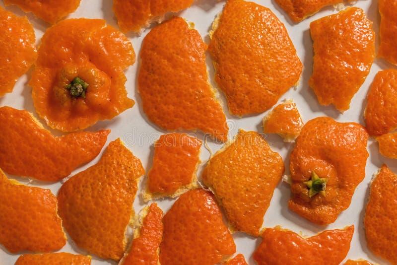 Bucce del mandarino su fondo bianco immagine stock libera da diritti