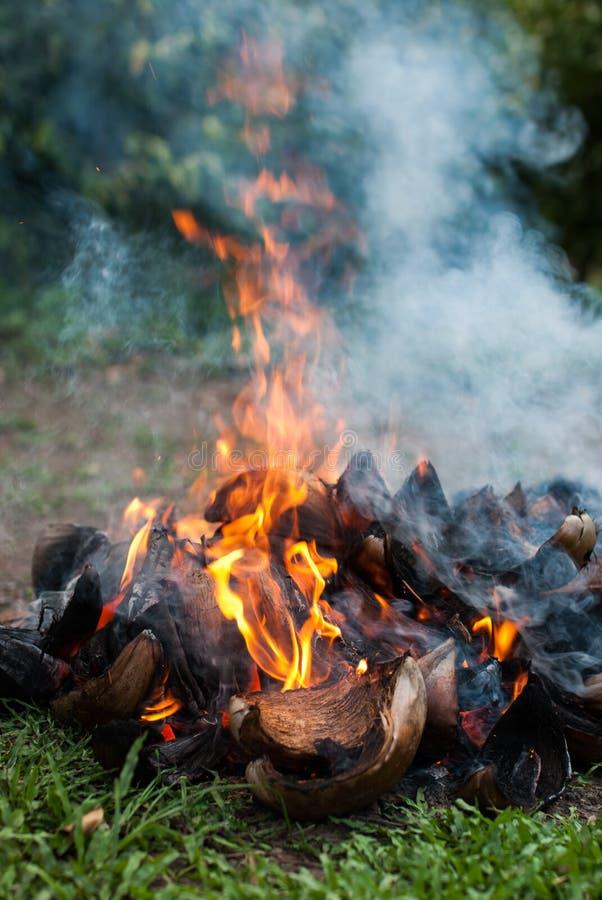 Bucce della noce di cocco con fuoco fotografie stock libere da diritti
