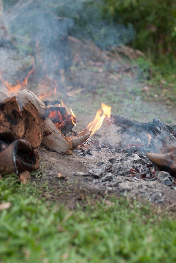 Bucce della noce di cocco con fuoco fotografia stock