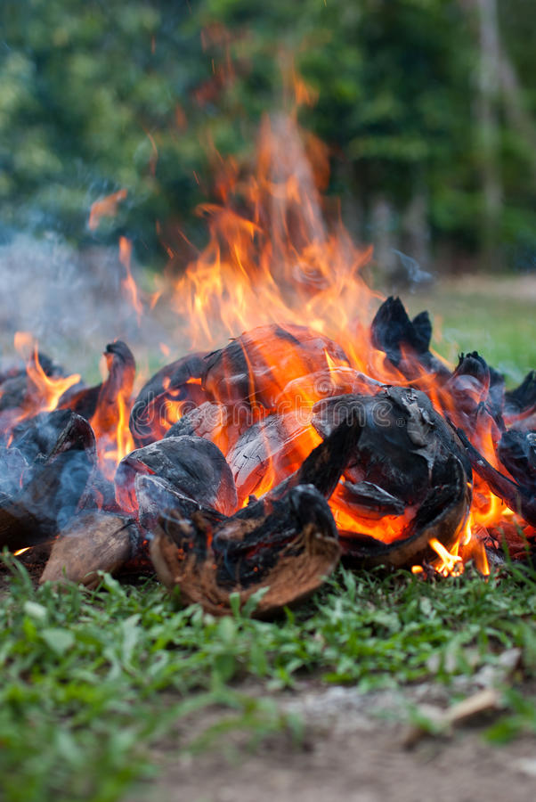 Bucce della noce di cocco con fuoco immagini stock