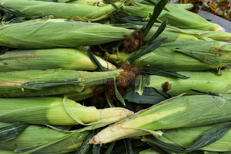 Bucce di cereale fresche sulla Tabella ad un mercato delle verdure immagine stock libera da diritti