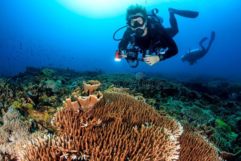 Buceador con una cámara que nada sobre un filón tropical foto de archivo libre de regalías