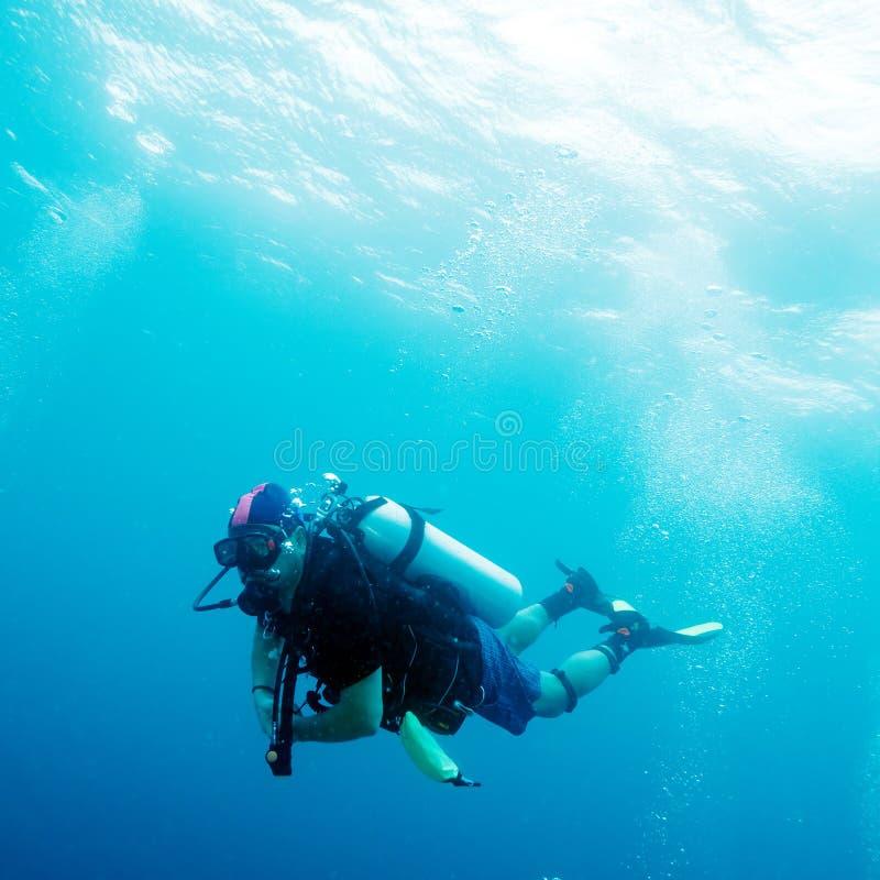 Buceador en el océano imagenes de archivo