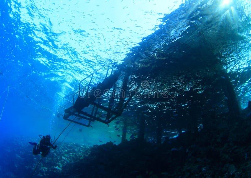 Buceador por el embarcadero viejo bajo el agua fotografía de archivo