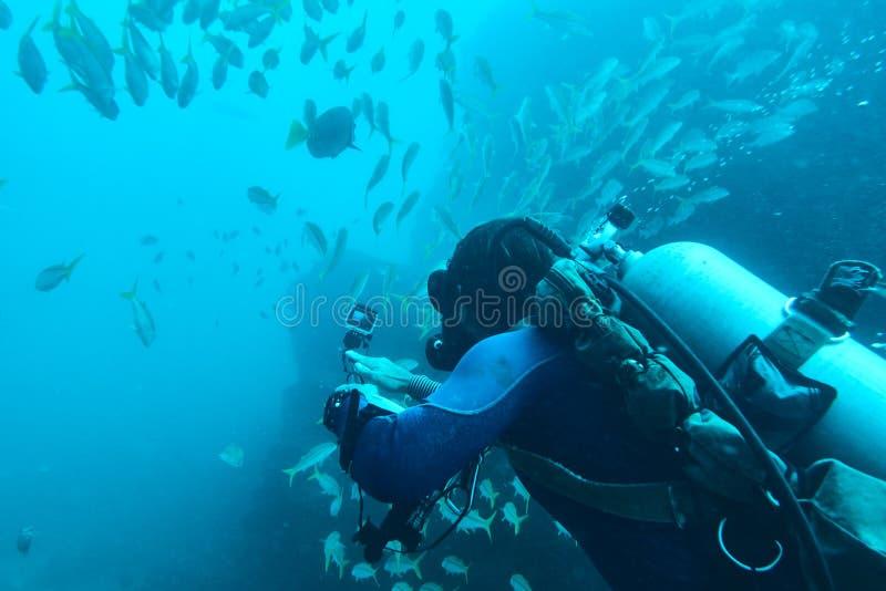 Buceador que registra el vídeo subacuático fotos de archivo