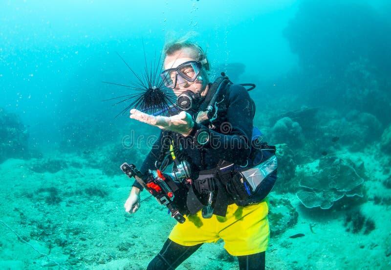 Buceador Scuba con erizo de mar fotografía de archivo libre de regalías