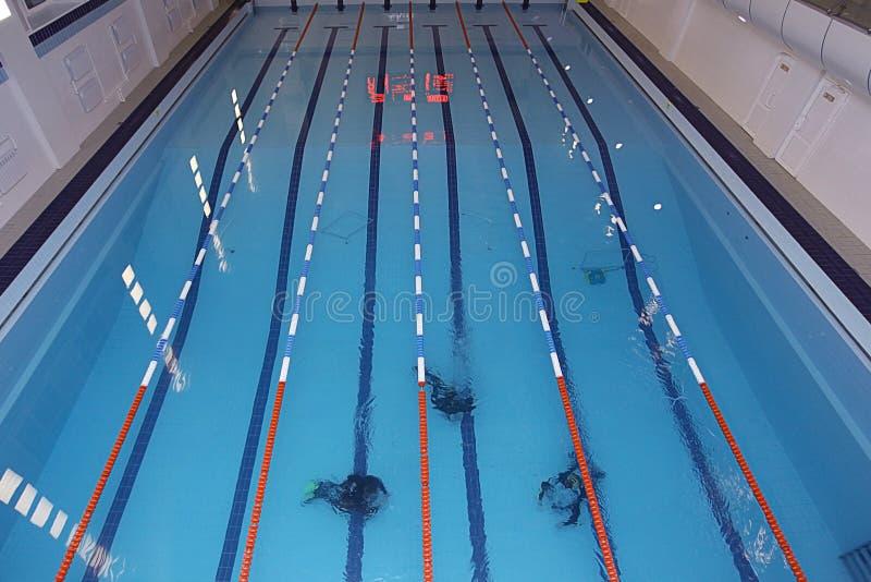 Buceadores en la piscina imagen de archivo