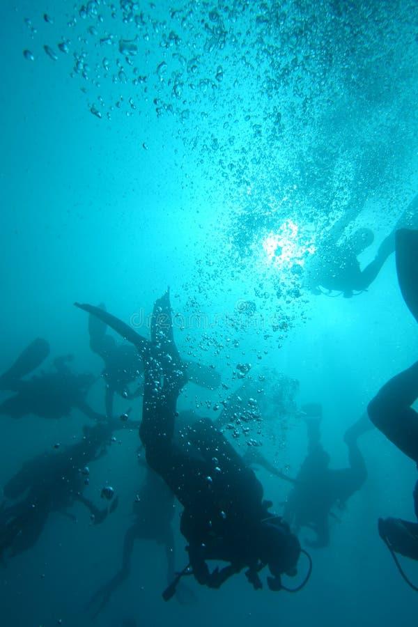 Buceadores subacuáticos en Khao Lak, Tailandia imagen de archivo libre de regalías