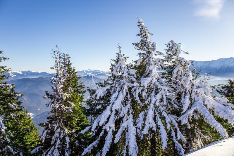 Bucegi góry przeglądać od Postavarul szczytu, Brasov, Transylvania, Rumunia zdjęcia stock